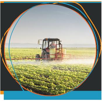 Área de Atuação Fertilizantes